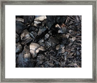 Pine Cone Cinders Framed Print