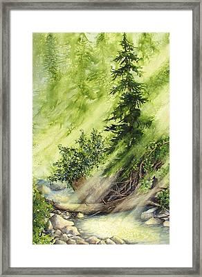Pine Creek Framed Print
