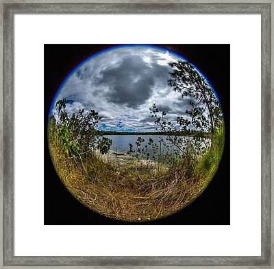 Pine Glades Lake 18 Framed Print