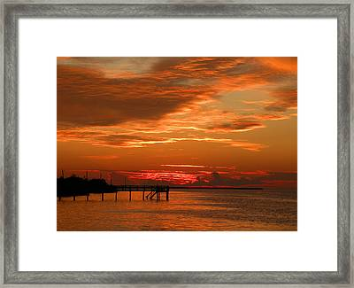 Framed Print featuring the photograph Pine Island Sunset by Rosalie Scanlon