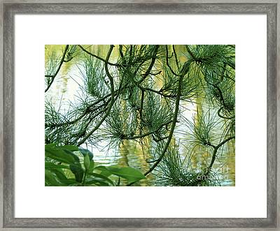 Pine Needles Patchwork Framed Print