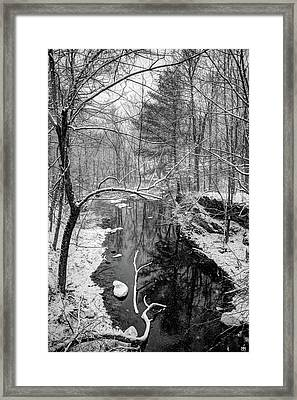 Pine Reflection On The Sheepscot Framed Print