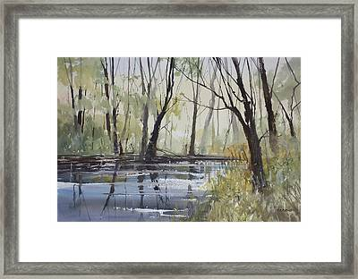 Pine River Reflections Framed Print