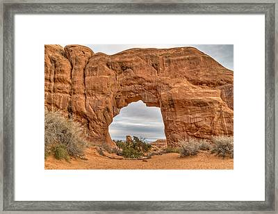 Pine Tree Arch Framed Print by Brett Engle