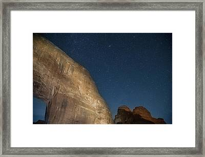 Pine Tree Arch Framed Print by Kunal Mehra