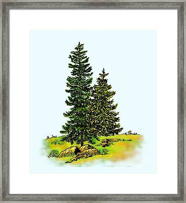 Pine Tree Nature Watercolor Ink Image 2b        Framed Print