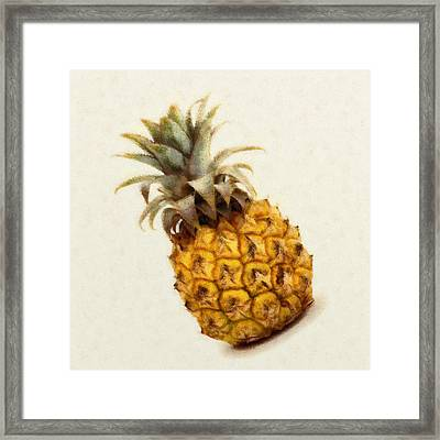 Pineapple  Framed Print