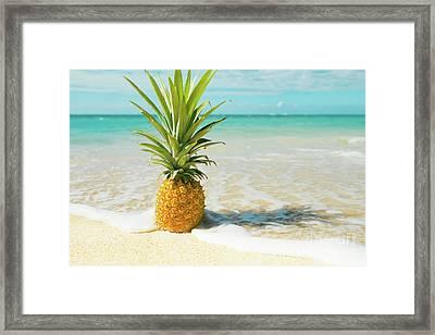 Pineapple Beach Framed Print