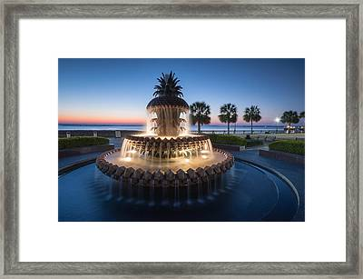 Pineapple Fountain Charleston Waterfront Park Framed Print