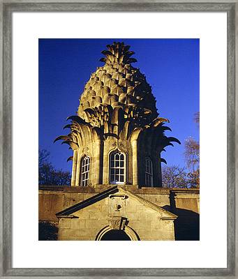 Pineapple In Scotland Framed Print by Donald Buchanan