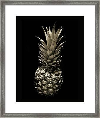 Pineapple In Sepia. Framed Print