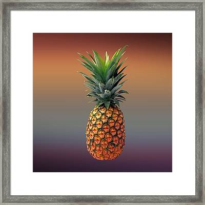 Pineapple Framed Print by Movie Poster Prints
