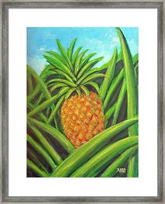 Pineapple Painting #332 Framed Print by Donald k Hall