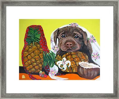Pineapple Puppy Framed Print by Aleta Parks