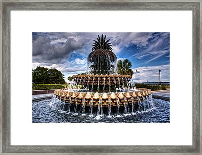 Pineapple Storm Framed Print by Drew Castelhano