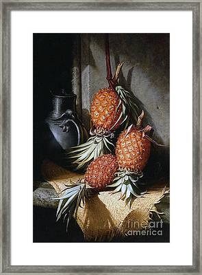 Pineapples, Circa 1880 Framed Print