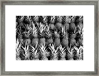 Pineapples In B/w Framed Print