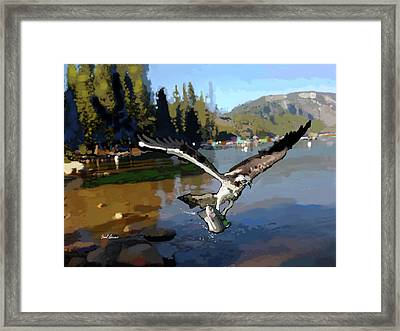 Pinecrest With Osprey And Trout Framed Print