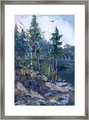 Pinelake  Framed Print