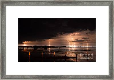 Pineland Nights Framed Print