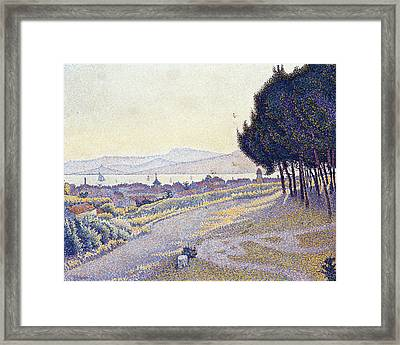 Pinewood Framed Print by MotionAge Designs