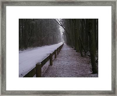 Piney Road Framed Print by Dominic Yannarella