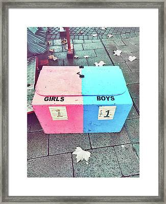 Pink And Blue Crate Framed Print by Tom Gowanlock