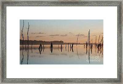 Pink And Blue Skies Framed Print by Debra Fedchin