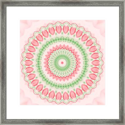 Pink And Green Mandala Fractal 003 Framed Print