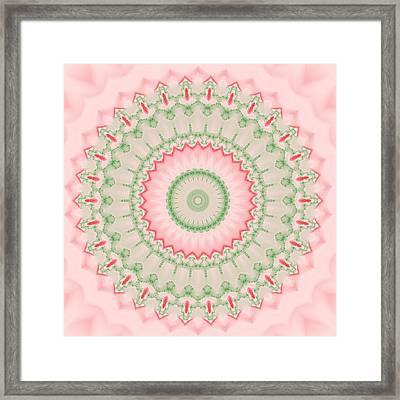 Pink And Green Mandala Fractal 004 Framed Print