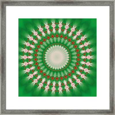 Pink And Green Mandala Fractal 005 Framed Print