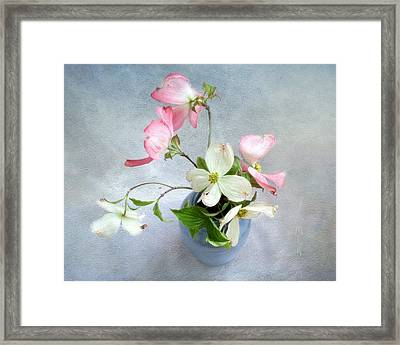 Pink And White Dogwood Still Framed Print