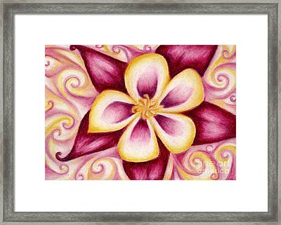Pink And Yellow Columbine Flower Drawing Framed Print