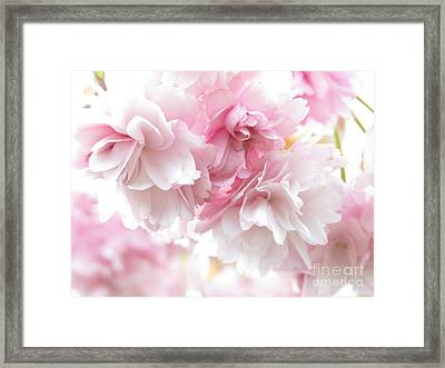 Pink April Framed Print