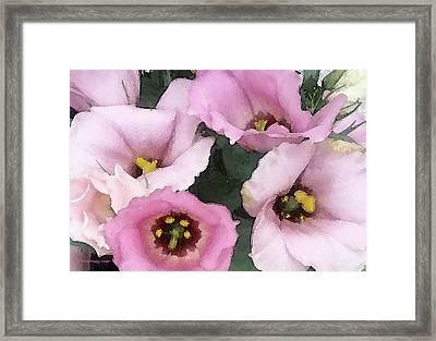 Pink Babies Framed Print