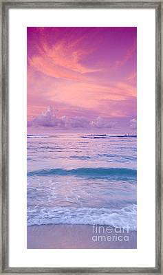 Pink Bliss -  Part 2 Of 3 Framed Print by Sean Davey