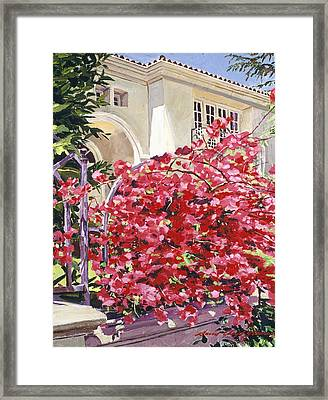 Pink Bougainvillea Mansion Framed Print by David Lloyd Glover