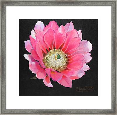 Framed Print featuring the painting Pink Cactus Flower by M Diane Bonaparte