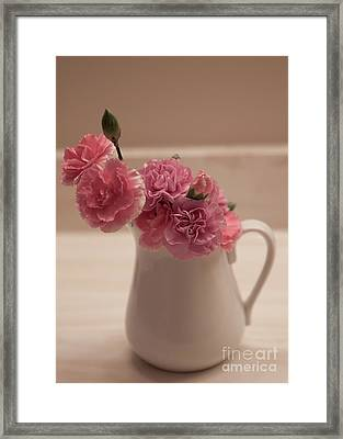 Pink Carnations Framed Print by Sherry Hallemeier