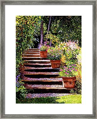 Pink Daisies Wooden Steps Framed Print by David Lloyd Glover