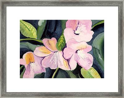 Pink Dancing Flowers Framed Print by Janet Doggett