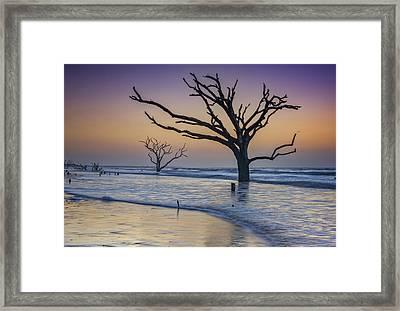 Pink Dawn At Botany Bay Framed Print