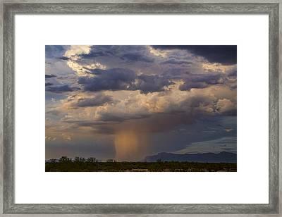 Pink Desert Rain  Framed Print