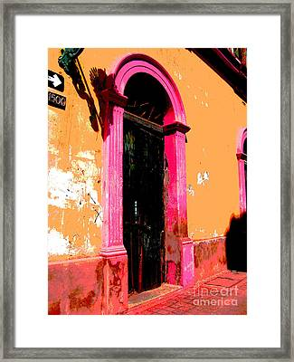Pink Door 1 By Darian Day Framed Print