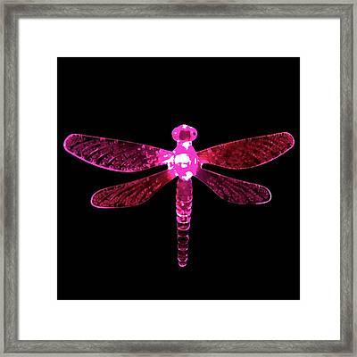 Pink Dragonfly Framed Print