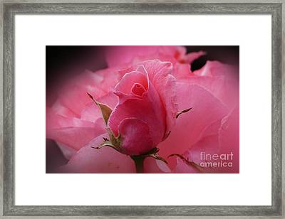 Pink Dream Framed Print by Lutz Baar