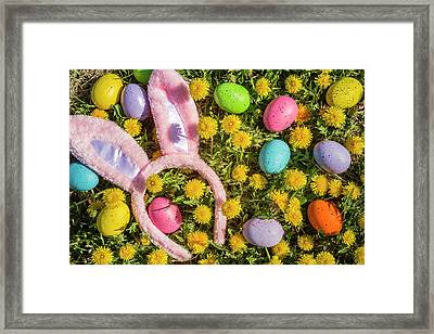 Framed Print featuring the photograph Pink Easter Bunny Ears by Teri Virbickis