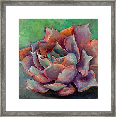 Pink Echeveria Framed Print by Athena  Mantle