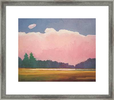 Pink Evening Framed Print by Lutz Baar