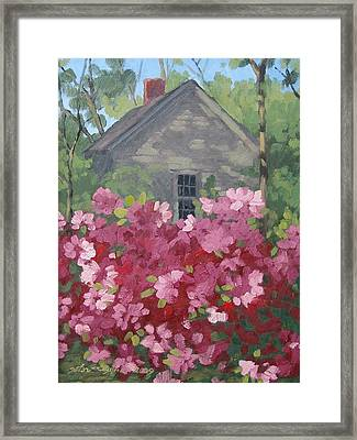 Pink Explosion Framed Print by Peter Muzyka